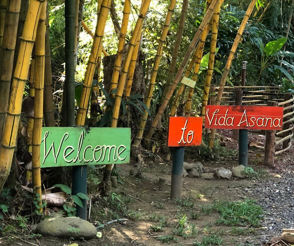 Vida-Asana-Welcome